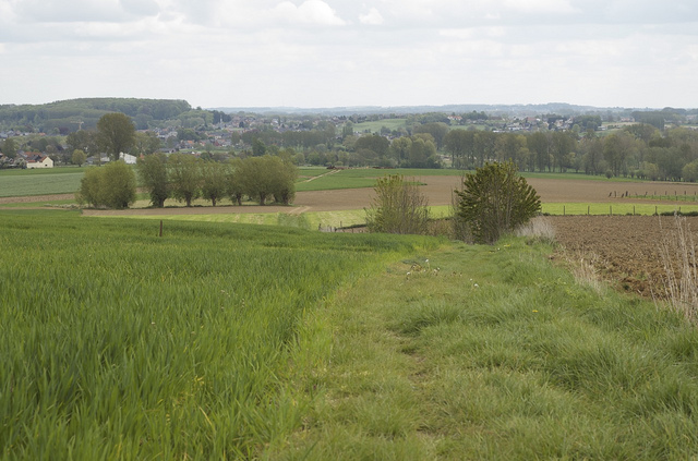 Ardennes Flamandes